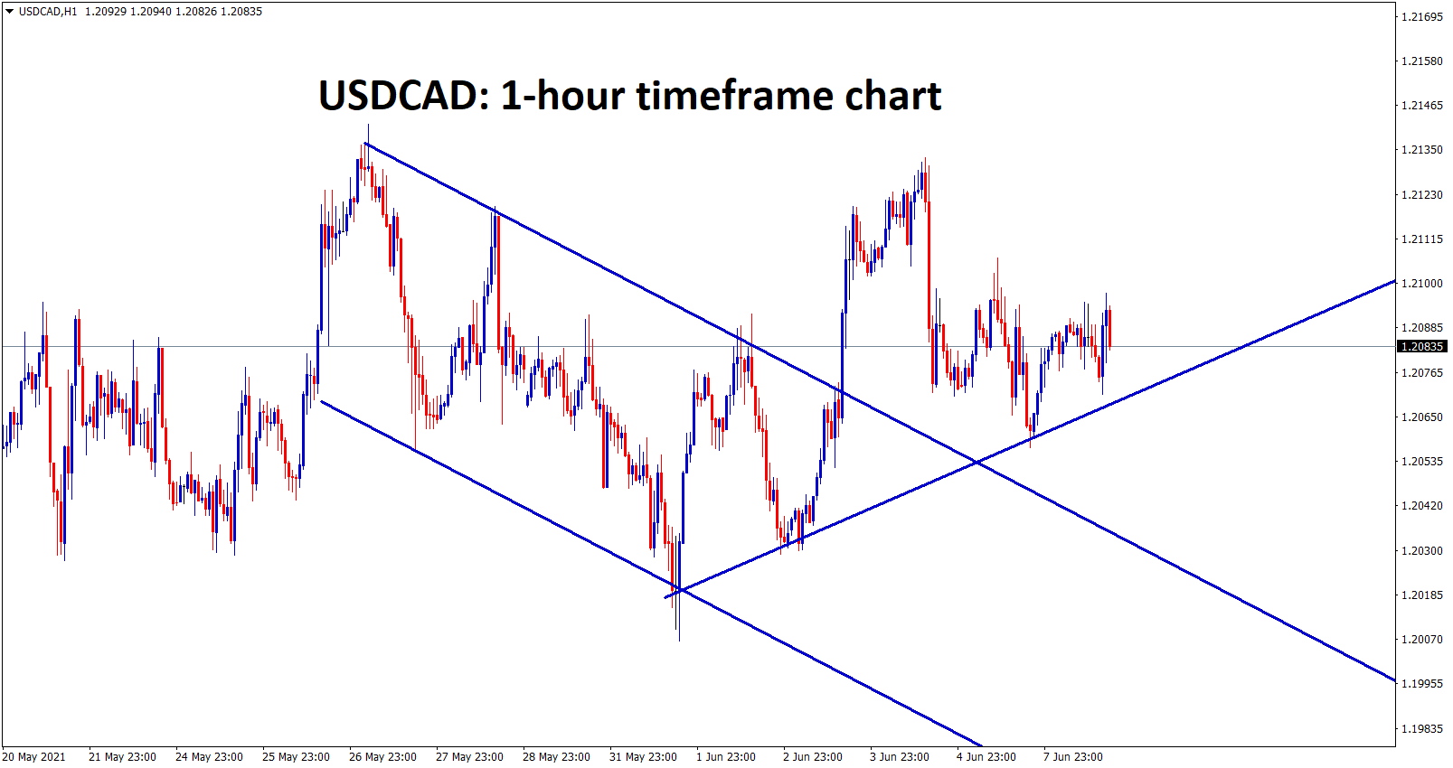 USDCAD broken the downtrend line and market moving now in an Uptrend