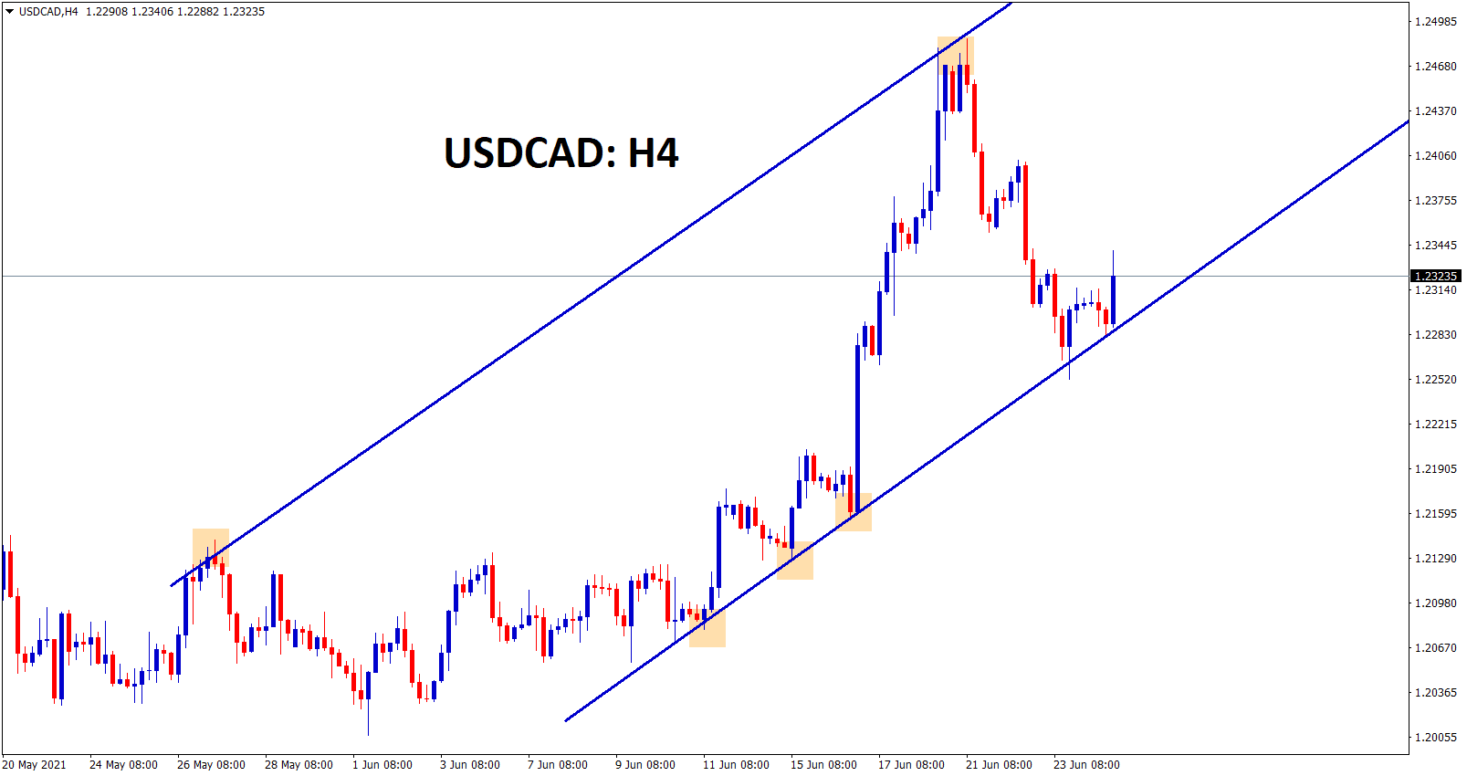 USDCAD is moving in an uptrend range after hitting the higher low went up.