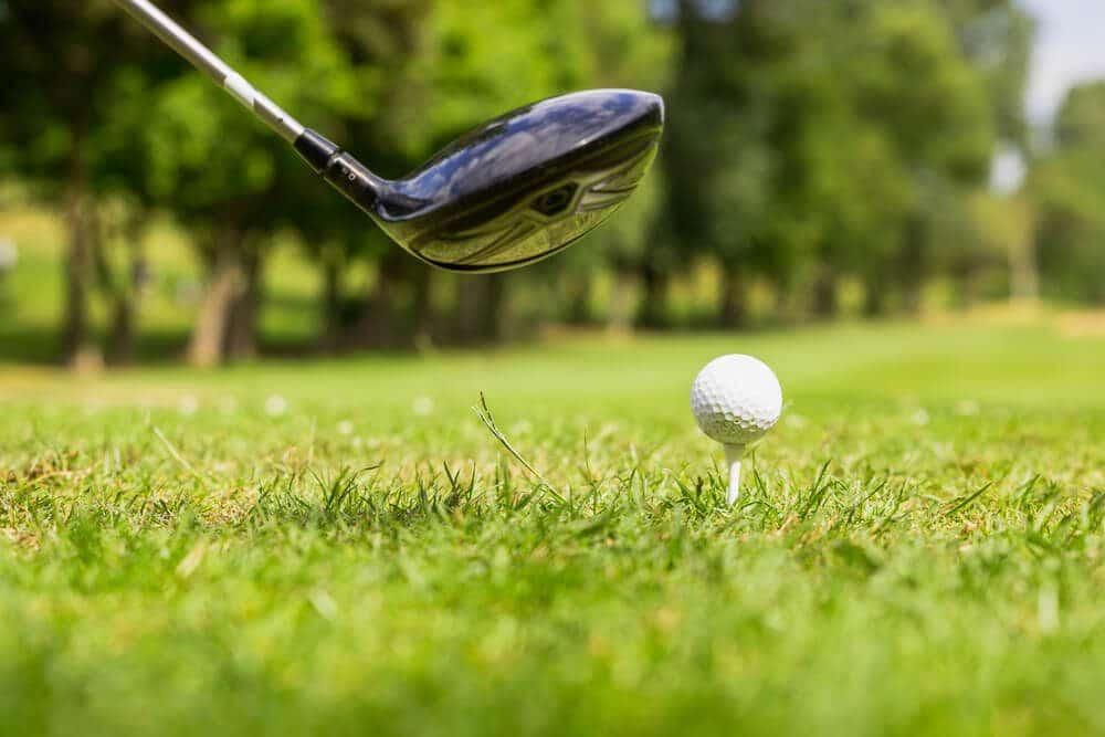 Golf one shot with stick warren buffet