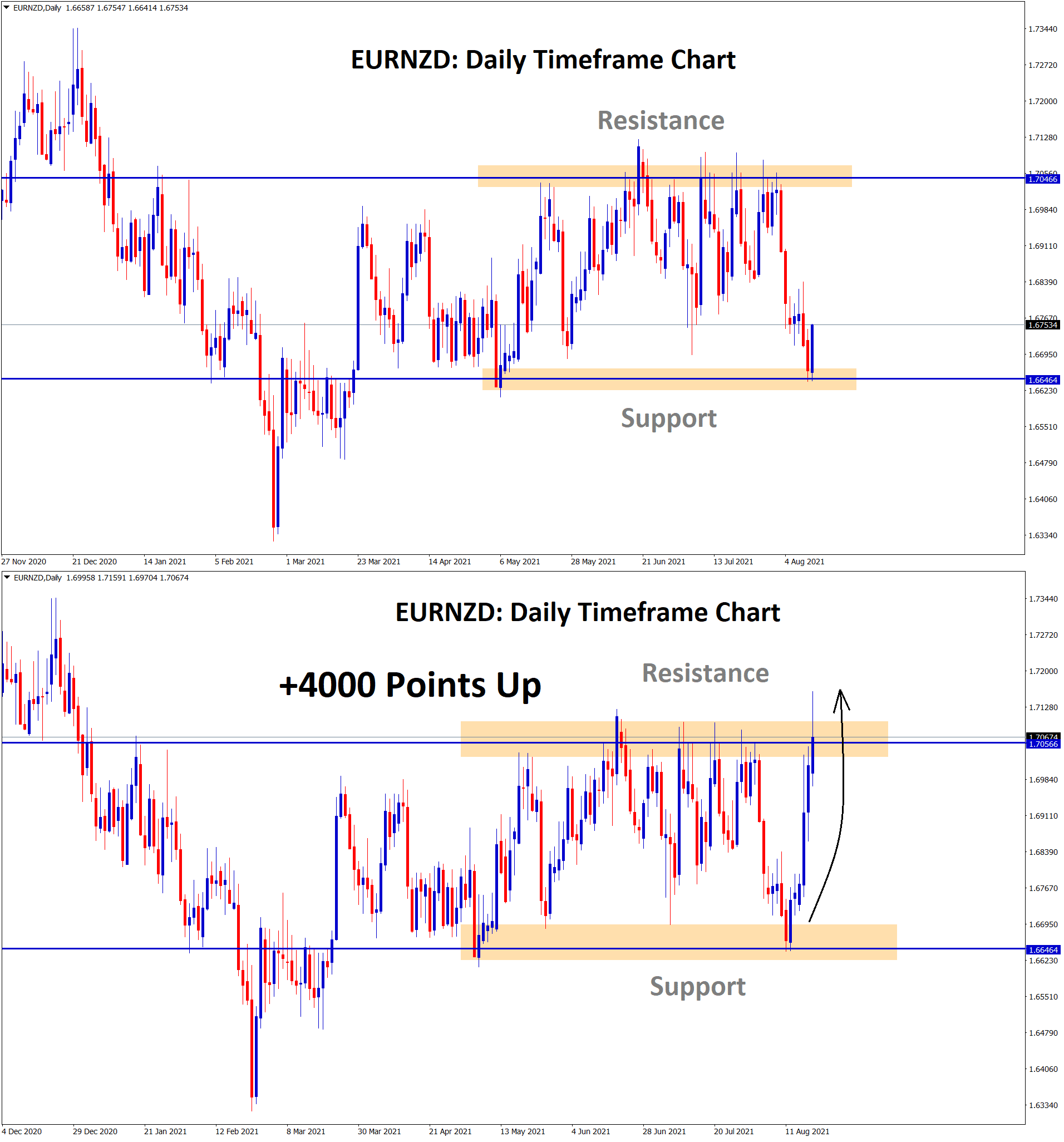 EURNZD rebound 4000 points from the support