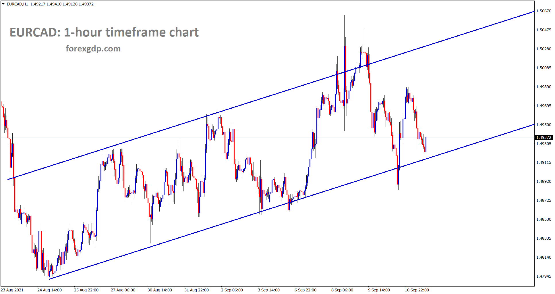 EURCAD is moving in a minor ascending channel for a long time