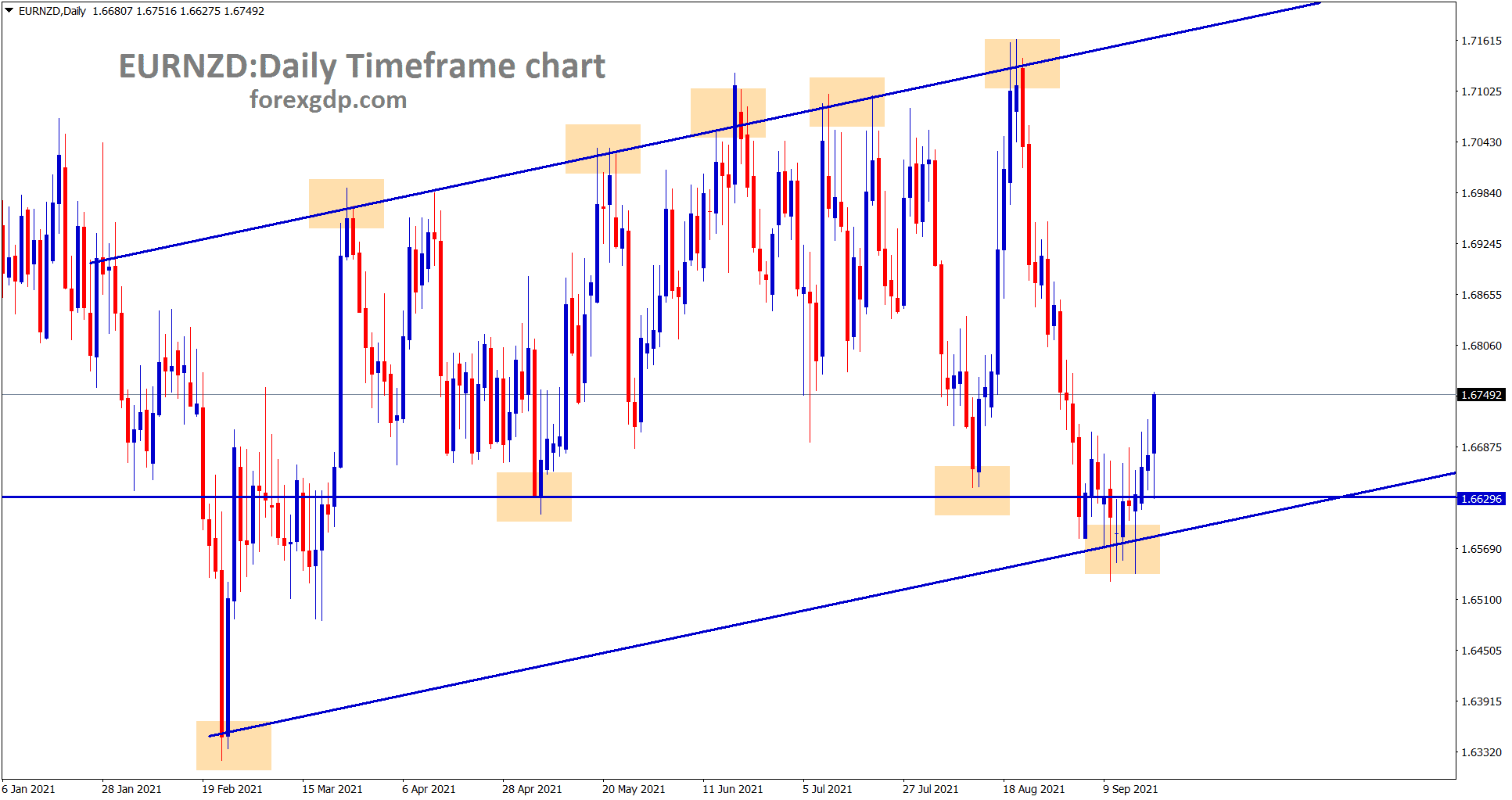 EURNZD is moving between the higher low ranges in the daily timeframe