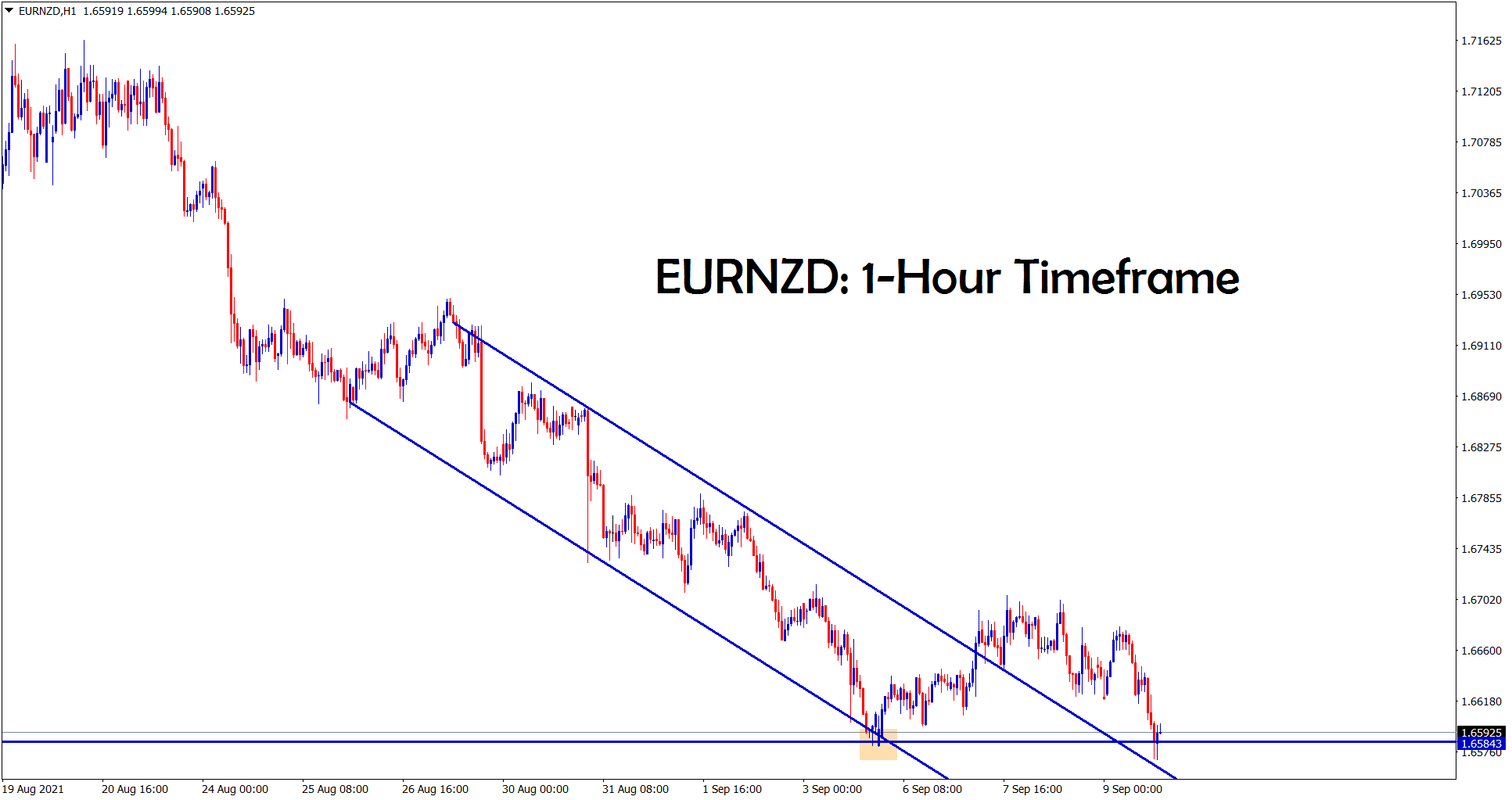 EURNZD reached the support area in the 1 hour timeframe