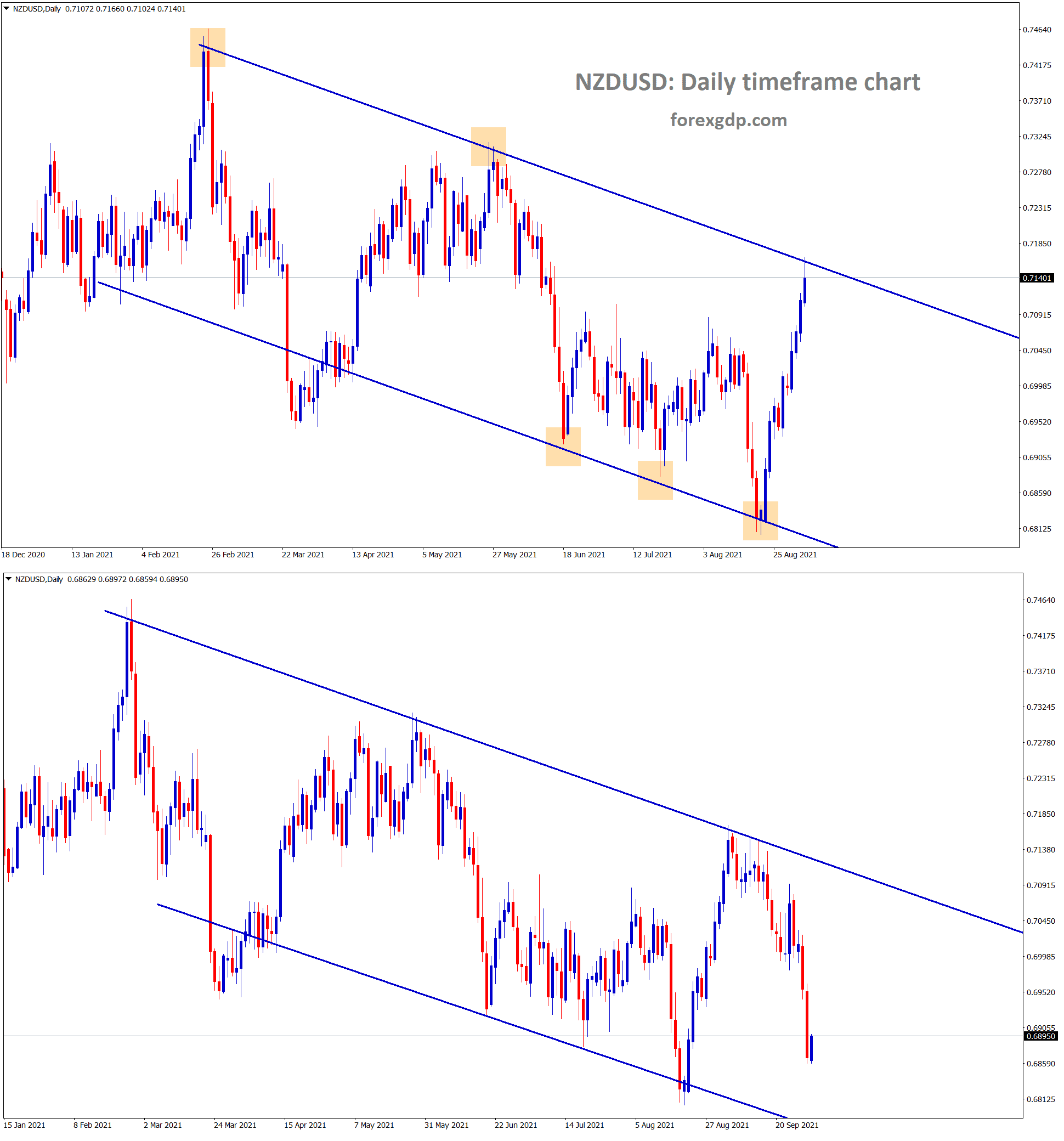 NZDUSD fell down more in this week from the lower high area of the descending channel